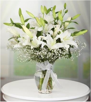 Vazoda lilyum casablanca